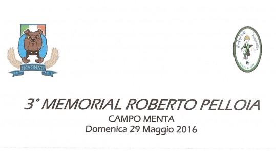MEMORIAL PELLOIA